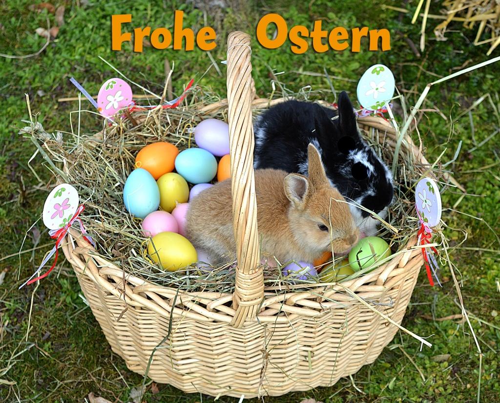 Ostern in Deutschland   Тест з німецької мови - «На Урок»